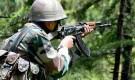 ঠাকুরগাঁও সীমান্তে বিএসএফ'র গুলিতে বাংলাদেশি নিহত